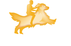 Logo hachiko